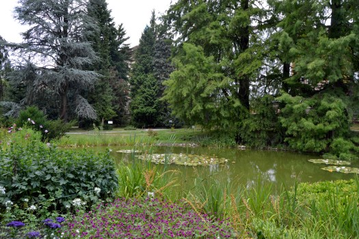 jardim-botanico.JPG